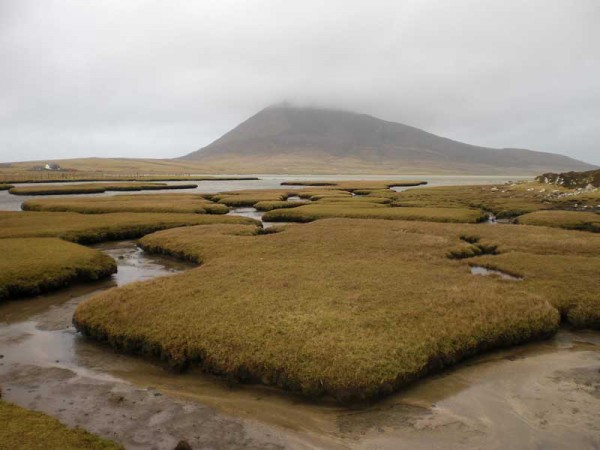 http://www.ronaldboer.com/files/gimgs/th-13_web_Ceapabhal_saltmarsh_01.jpg
